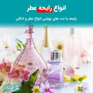 رایحه و نت های بویایی انواع عطر و ادکلن